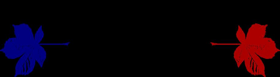 Aesculus Enterprises Inc.